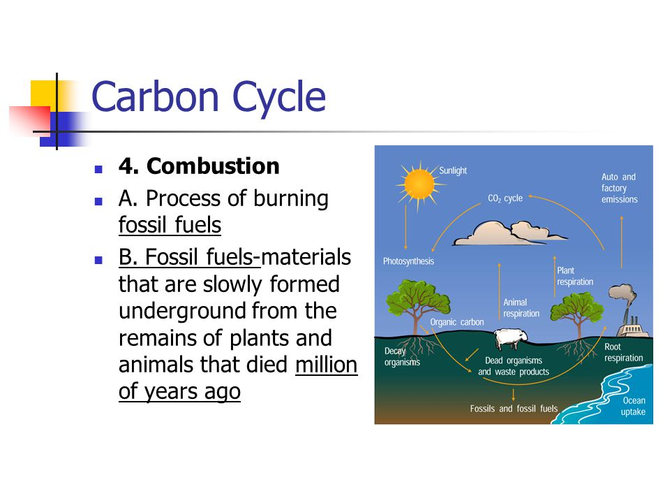 Carbon Cycle 4. Combustion A. Process of burning fossil fuels