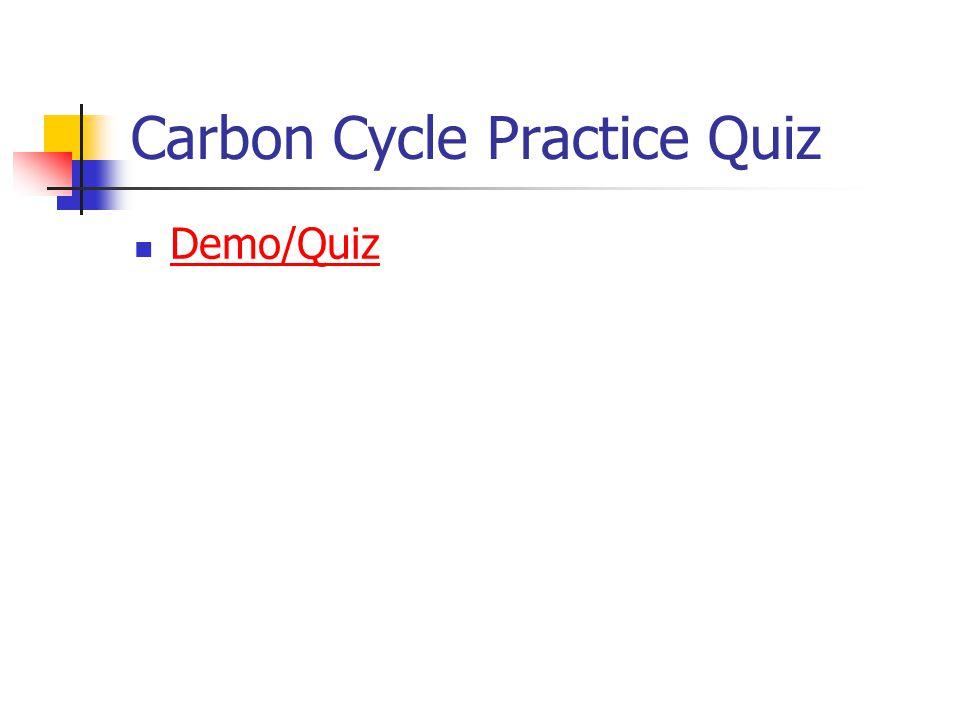 Carbon Cycle Practice Quiz