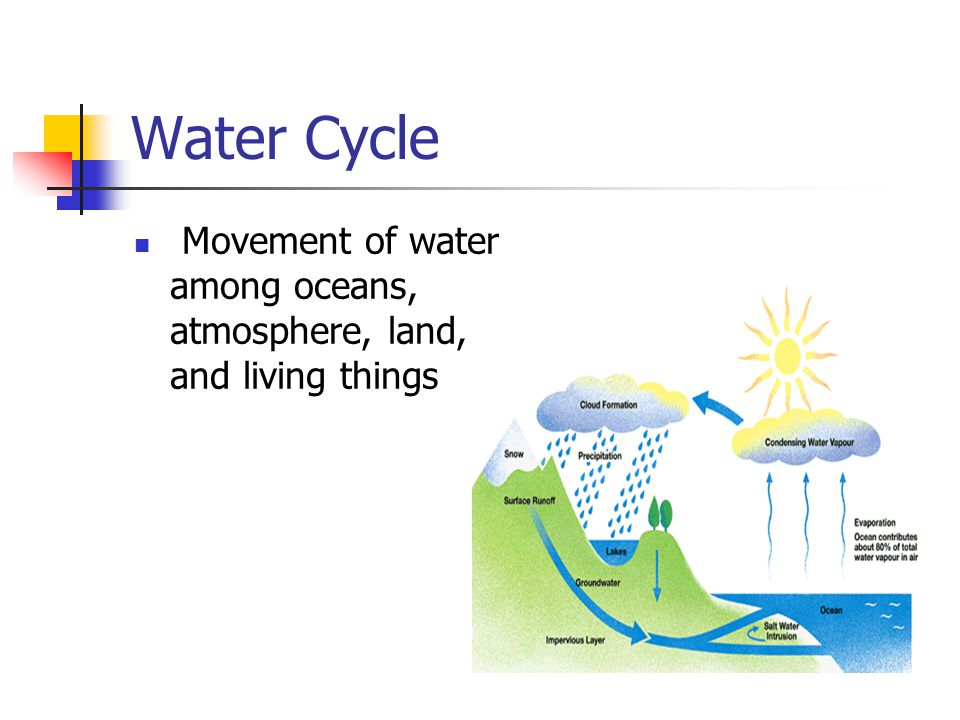 Water Cycle Movement of water among oceans, atmosphere, land, and living things