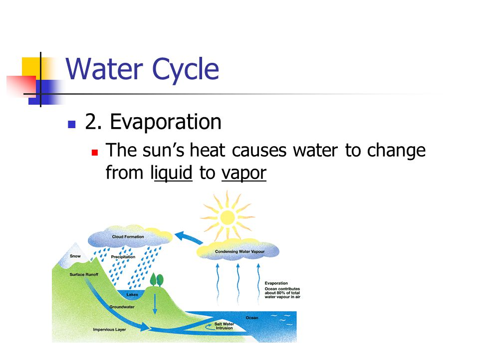 Water Cycle 2. Evaporation