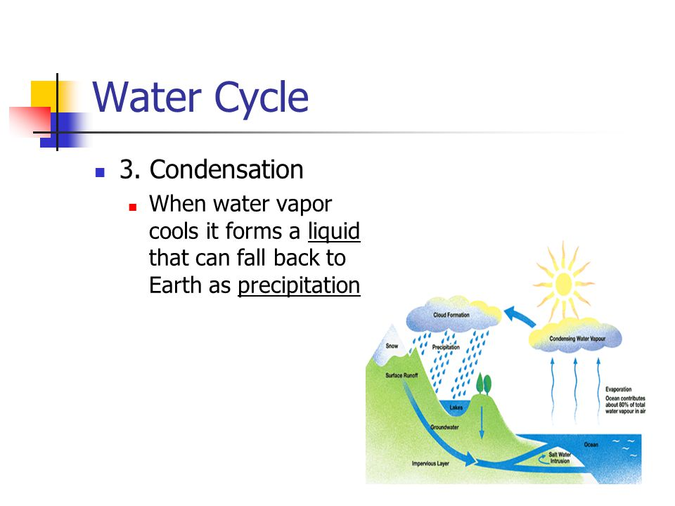 Water Cycle 3. Condensation