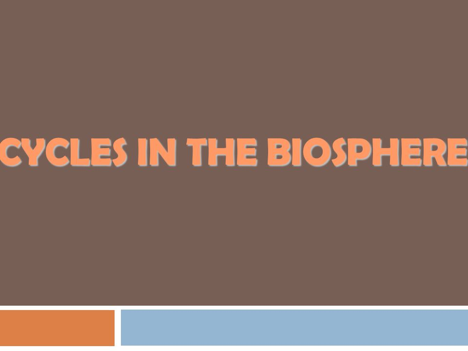 CYCLES IN THE bIOSPHERE
