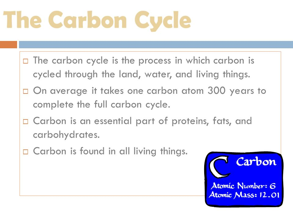 The Carbon Cycle The carbon cycle is the process in which carbon is cycled through the land, water, and living things.