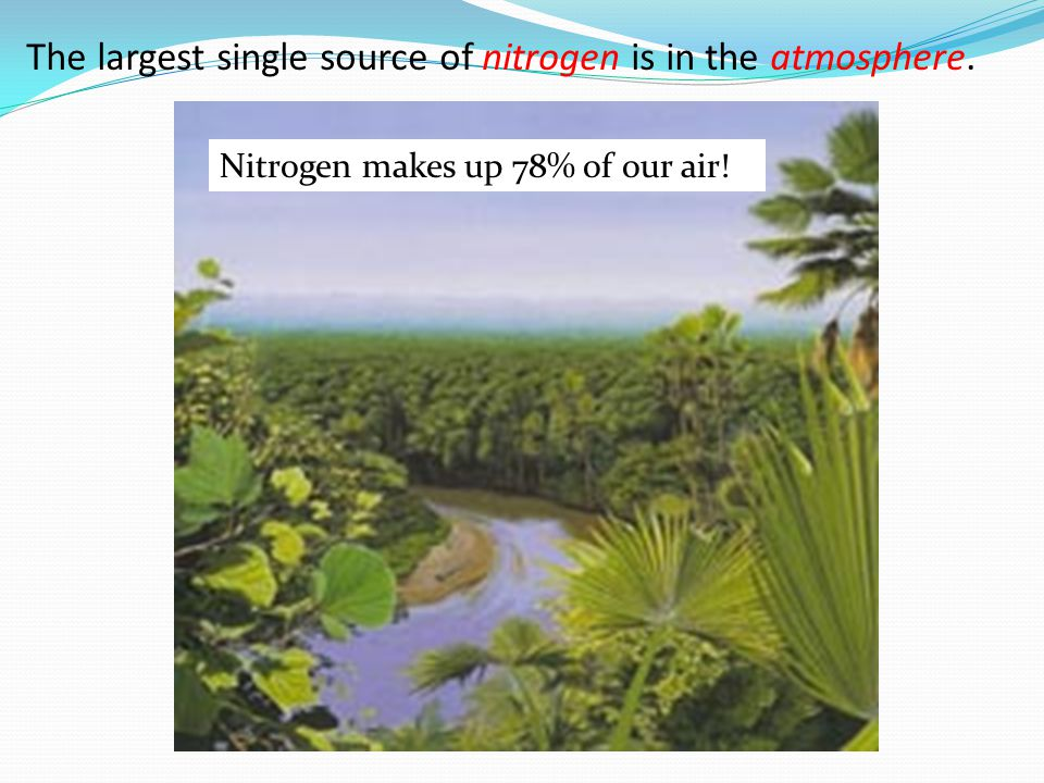 The largest single source of nitrogen is in the atmosphere.