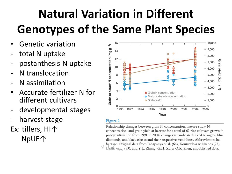 Natural Variation in Different Genotypes of the Same Plant Species