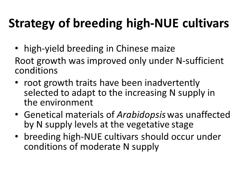 Strategy of breeding high-NUE cultivars