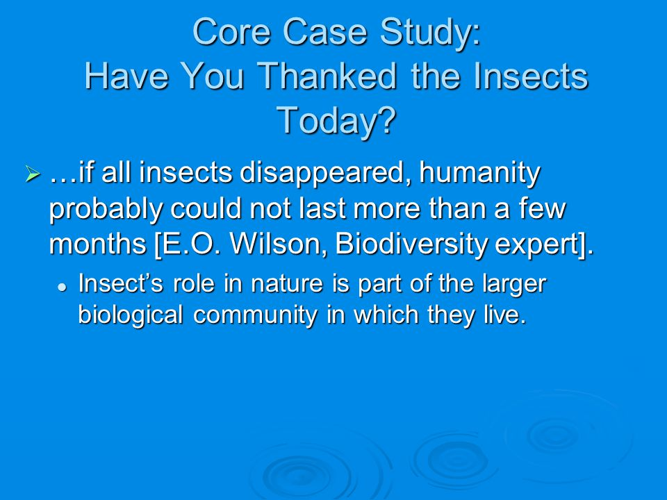 Core Case Study: Have You Thanked the Insects Today