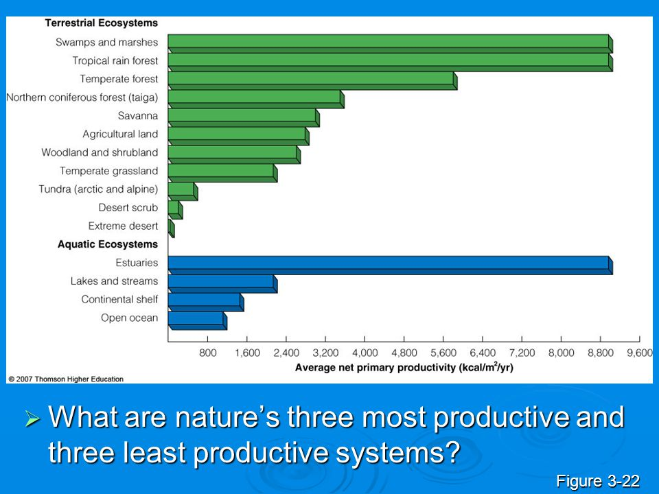 What are nature's three most productive and three least productive systems