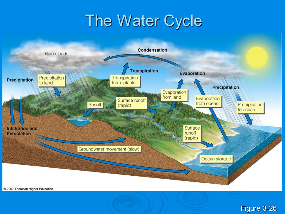 understanding phosphorus cycles and how it affects our ecosystem