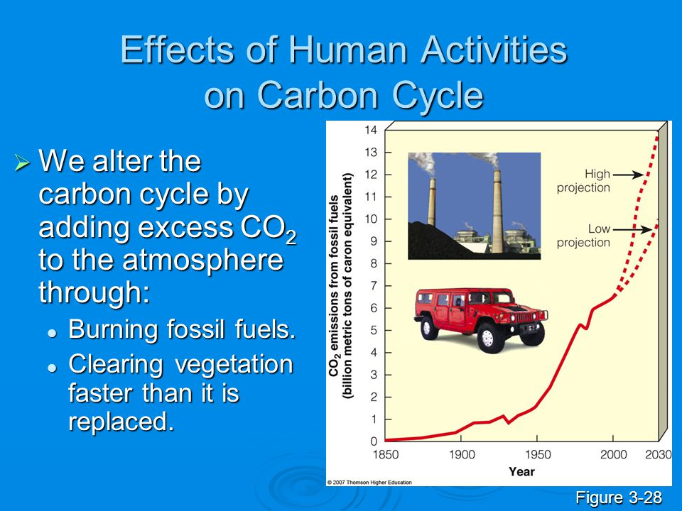 Effects of Human Activities on Carbon Cycle