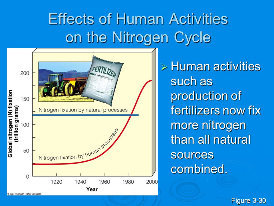 Effects of Human Activities on the Nitrogen Cycle