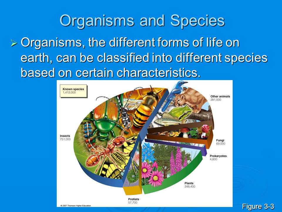 Organisms and Species Organisms, the different forms of life on earth, can be classified into different species based on certain characteristics.
