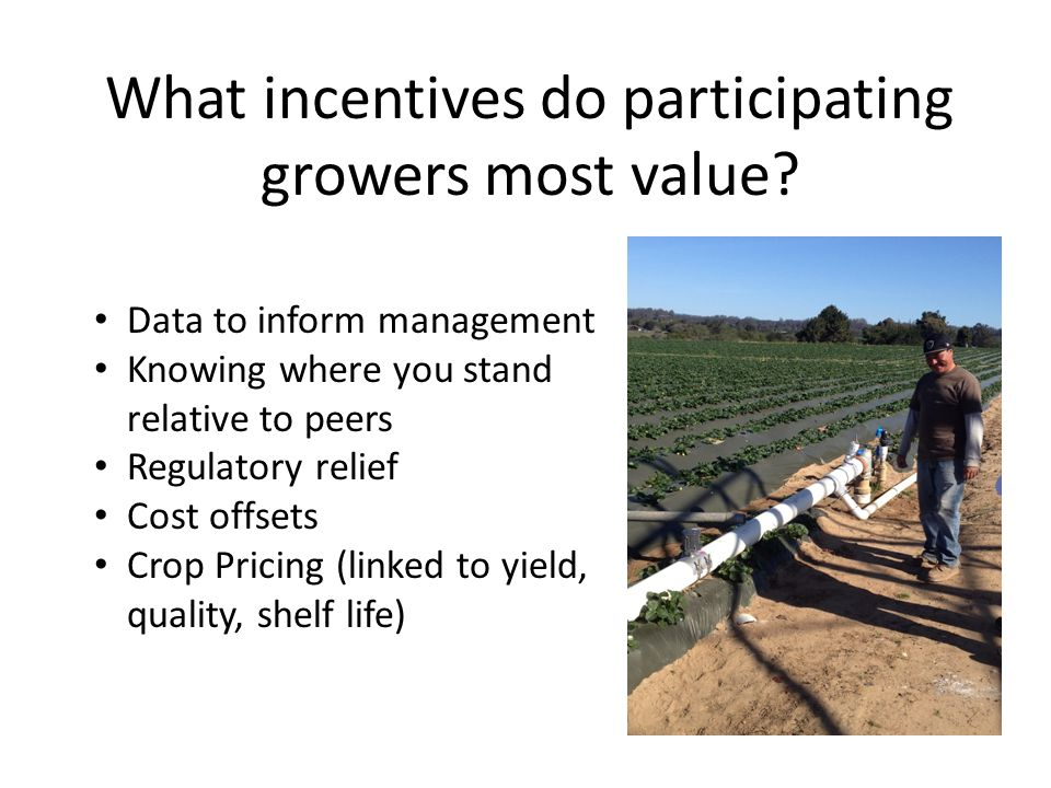 What incentives do participating growers most value