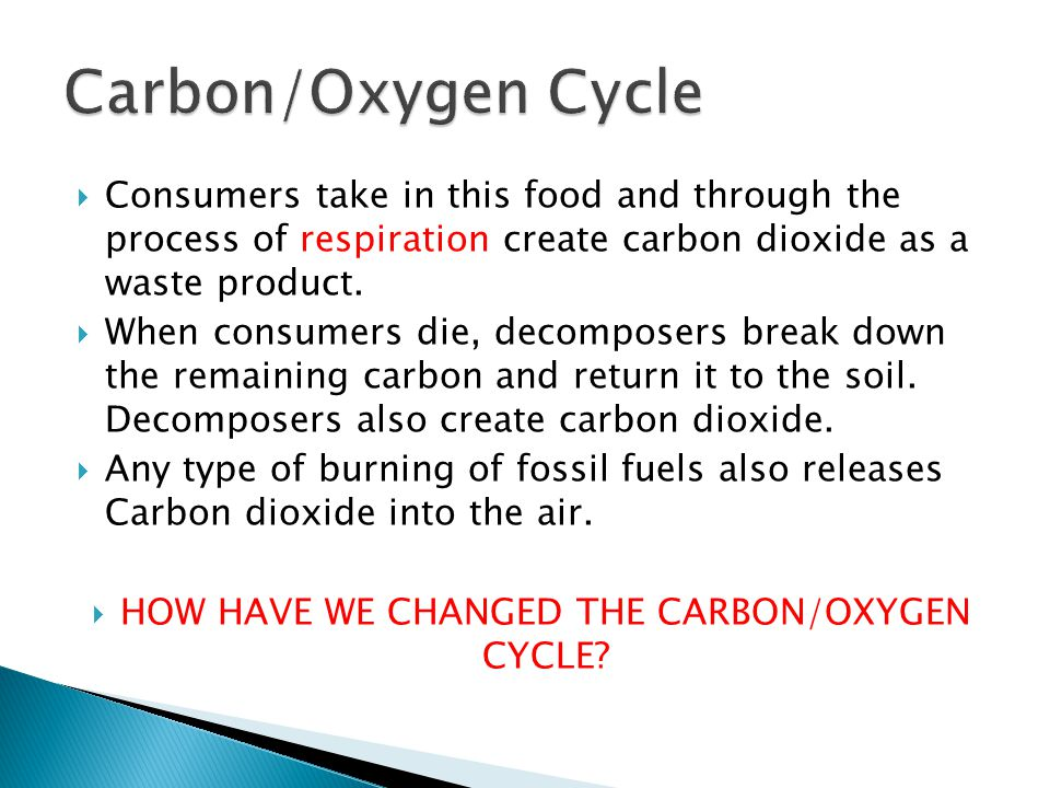 HOW HAVE WE CHANGED THE CARBON/OXYGEN CYCLE