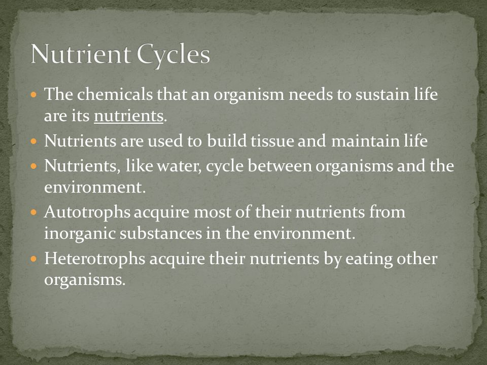 Nutrient Cycles The chemicals that an organism needs to sustain life are its nutrients. Nutrients are used to build tissue and maintain life.