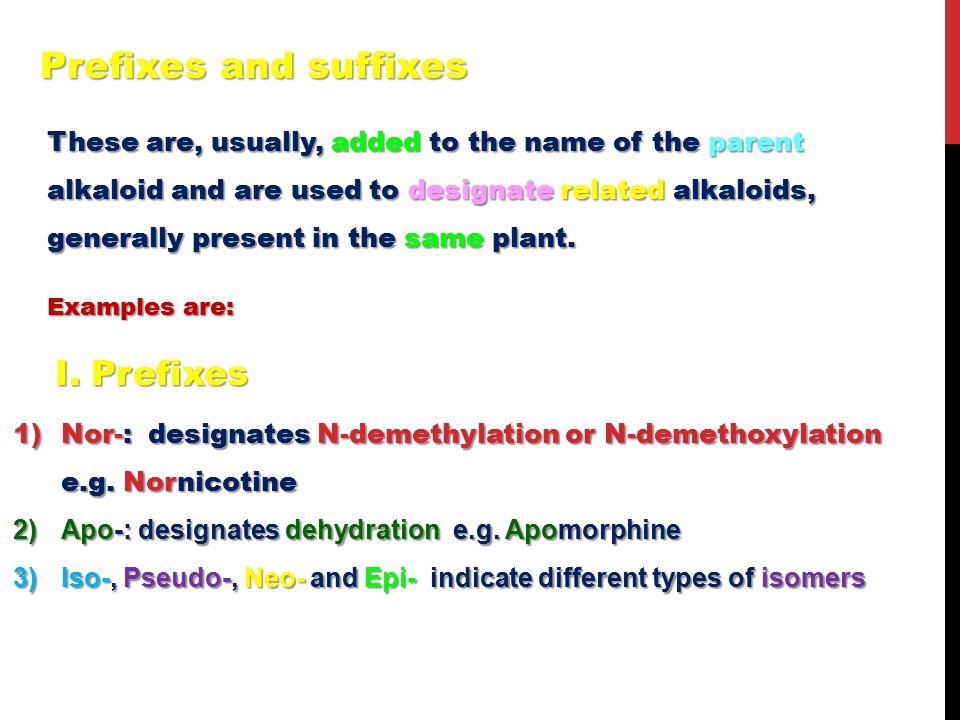 Prefixes and suffixes I. Prefixes