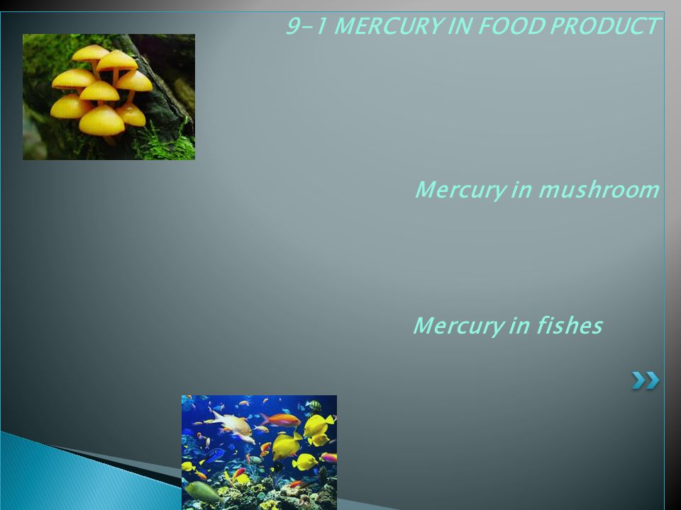 9-1 MERCURY IN FOOD PRODUCT