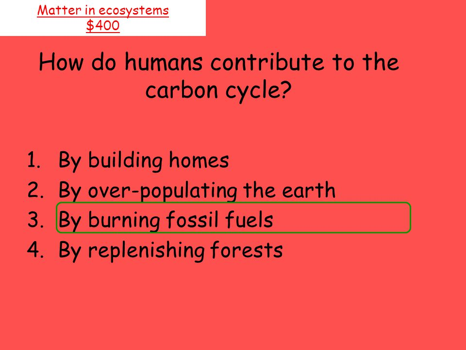 How do humans contribute to the carbon cycle