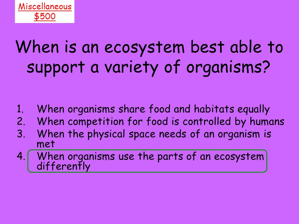 When is an ecosystem best able to support a variety of organisms
