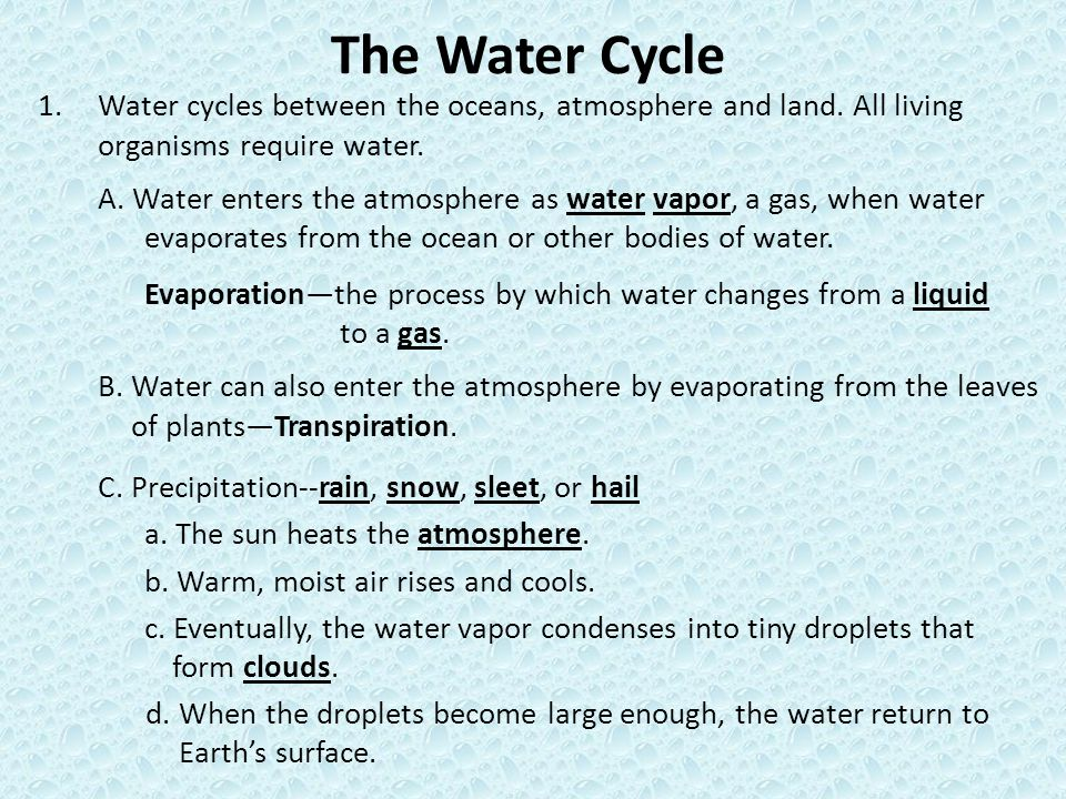 The Water Cycle Water cycles between the oceans, atmosphere and land. All living organisms require water.