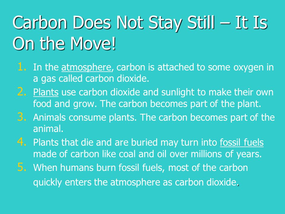 Carbon Does Not Stay Still – It Is On the Move!