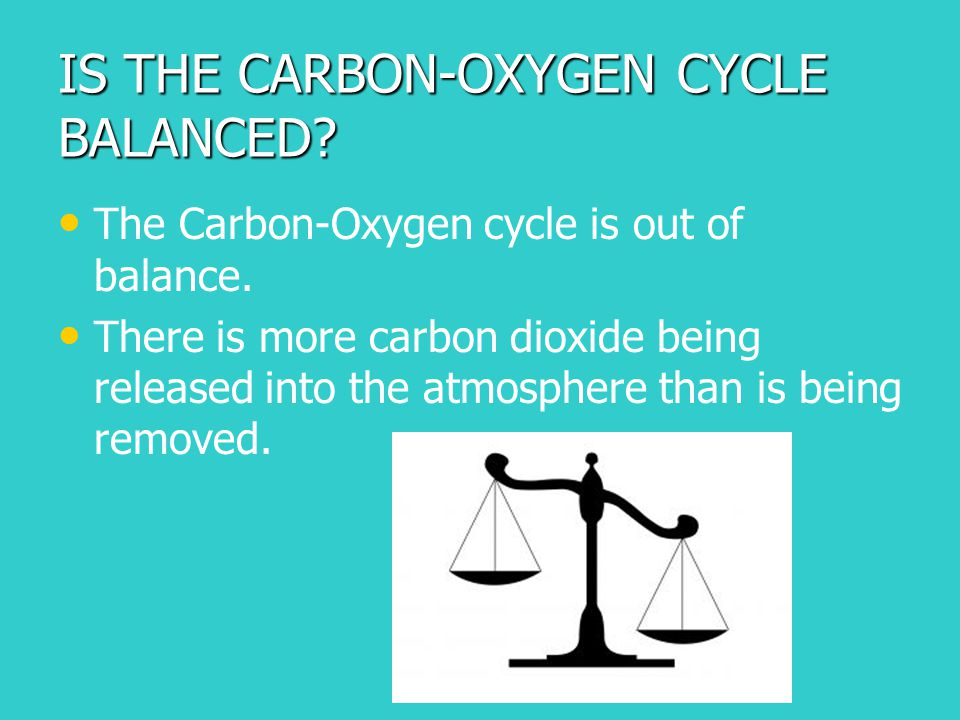 IS THE CARBON-OXYGEN CYCLE BALANCED