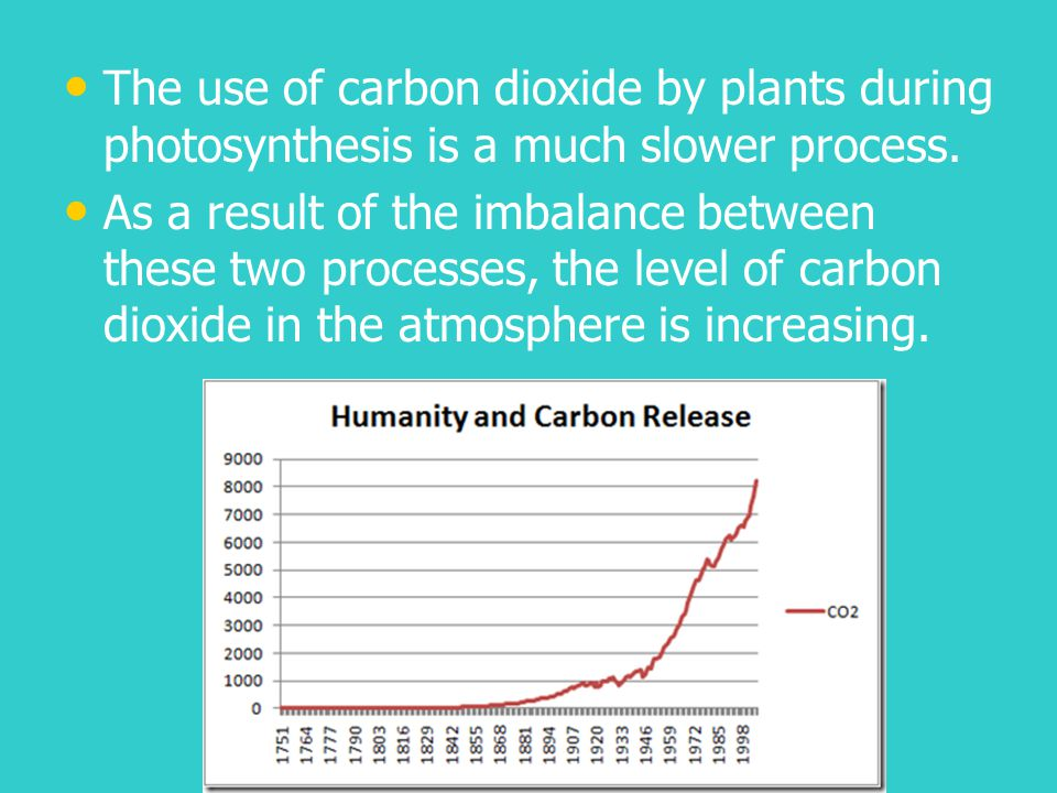 The use of carbon dioxide by plants during photosynthesis is a much slower process.