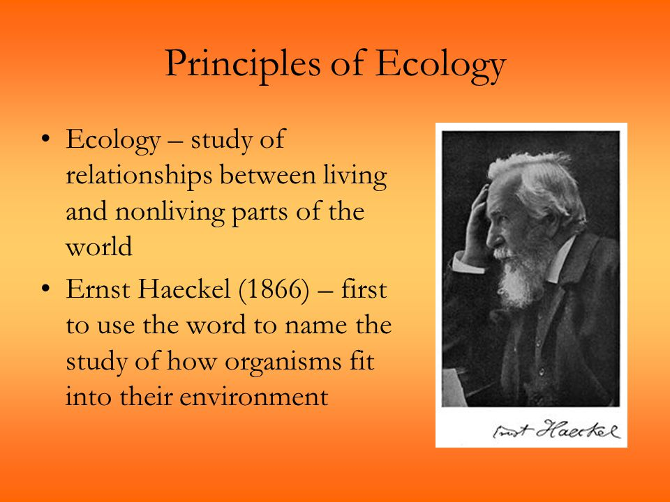 Principles of Ecology Ecology – study of relationships between living and nonliving parts of the world.