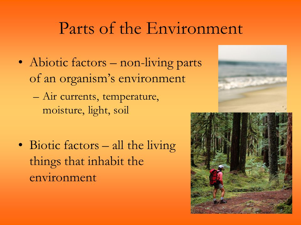 Parts of the Environment