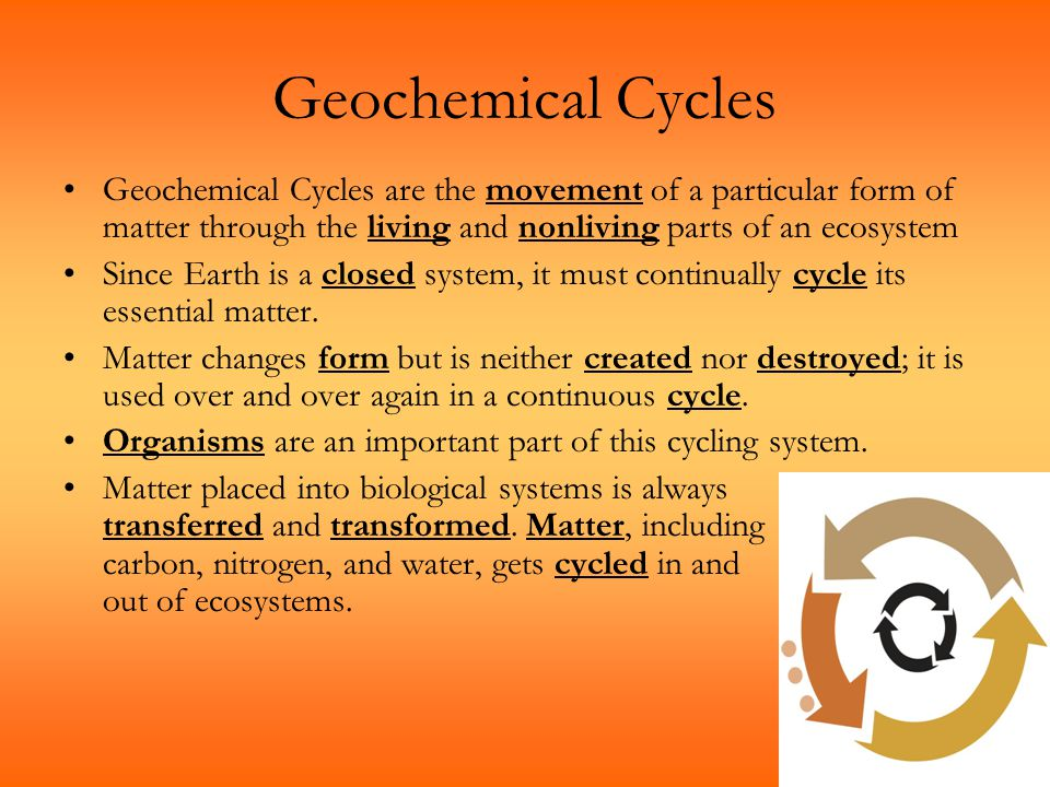 Geochemical Cycles Geochemical Cycles are the movement of a particular form of matter through the living and nonliving parts of an ecosystem.