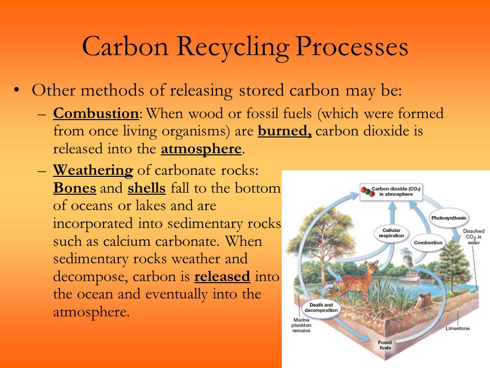 Carbon Recycling Processes