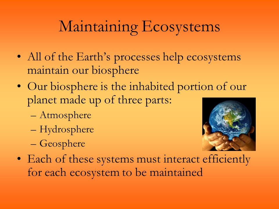 Maintaining Ecosystems