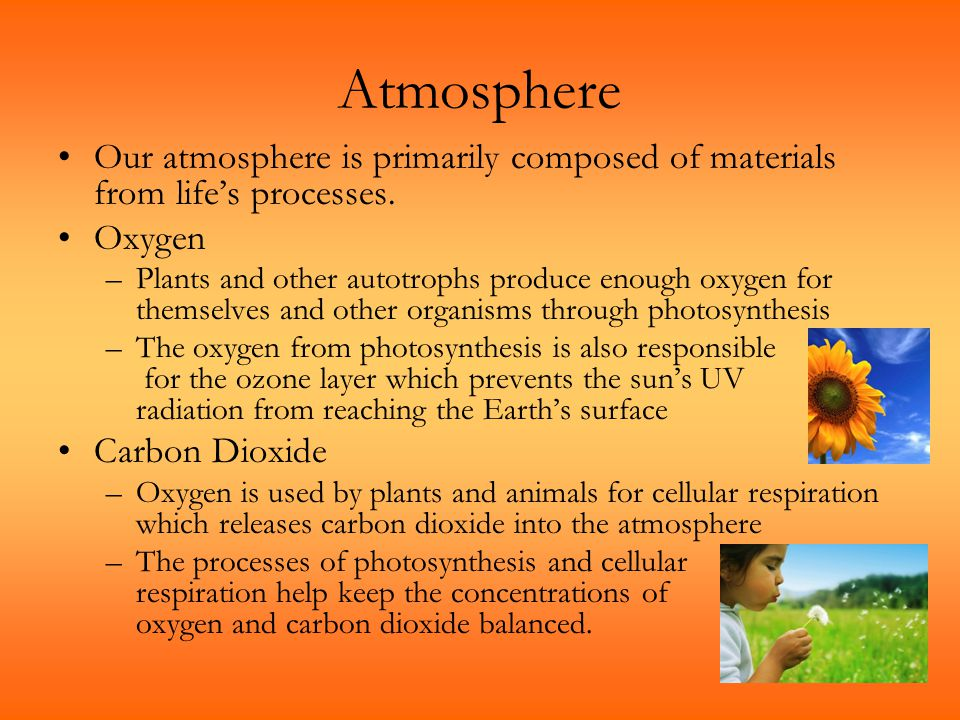 Atmosphere Our atmosphere is primarily composed of materials from life's processes. Oxygen.