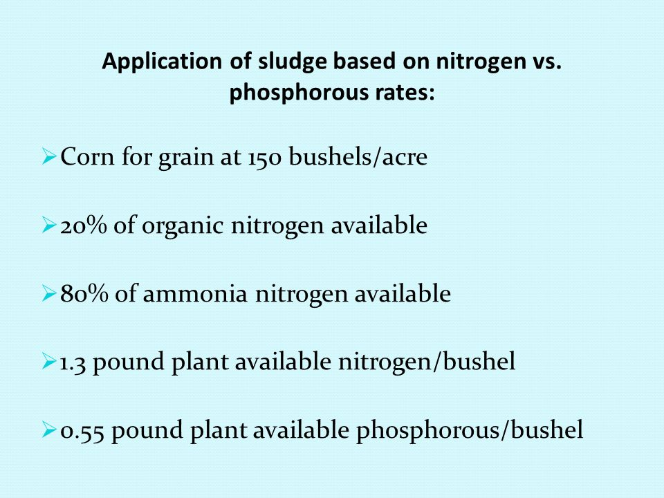 Application of sludge based on nitrogen vs. phosphorous rates:
