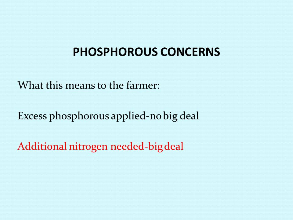 PHOSPHOROUS CONCERNS What this means to the farmer: Excess phosphorous applied-no big deal Additional nitrogen needed-big deal