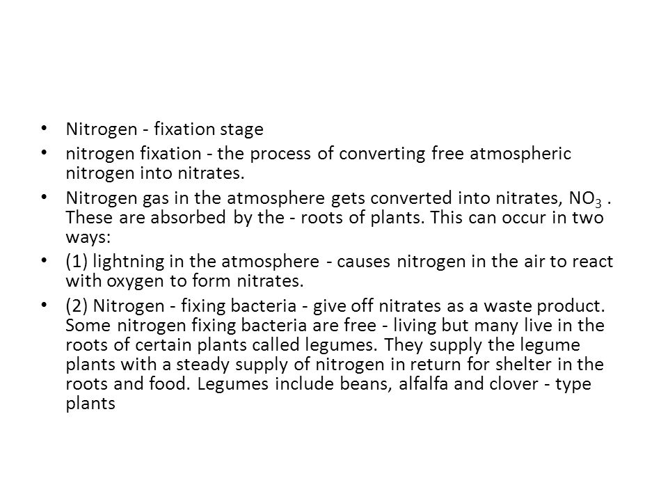 Nitrogen - fixation stage
