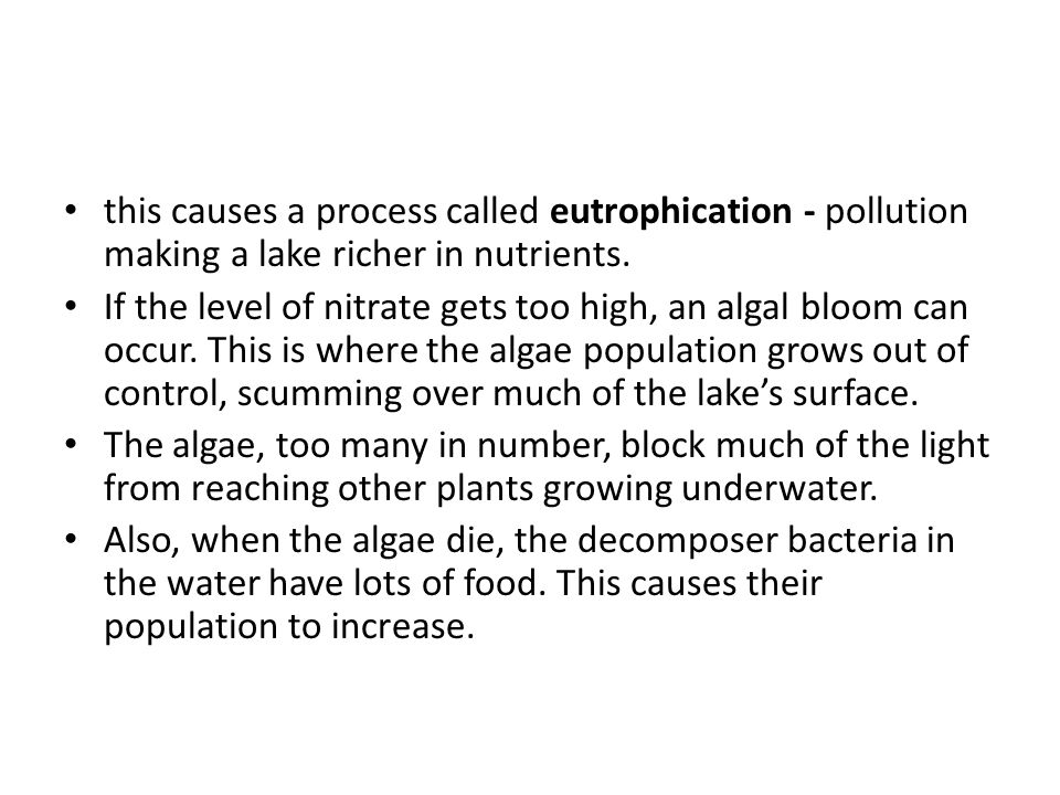 this causes a process called eutrophication - pollution making a lake richer in nutrients.