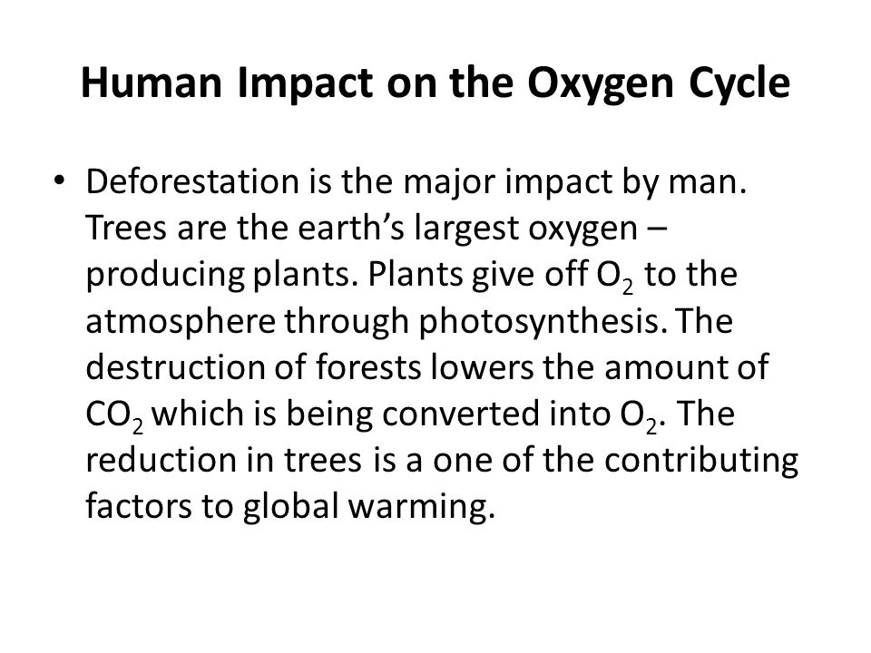 Human Impact on the Oxygen Cycle