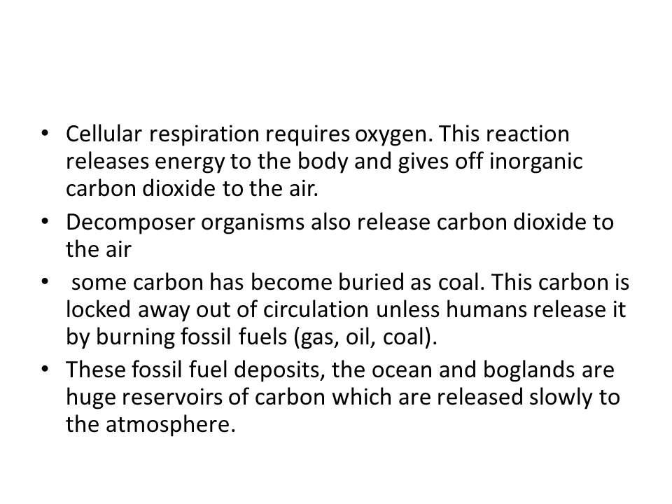 Cellular respiration requires oxygen