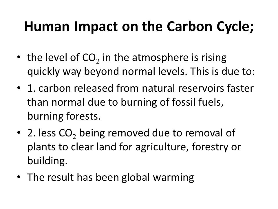 Human Impact on the Carbon Cycle;
