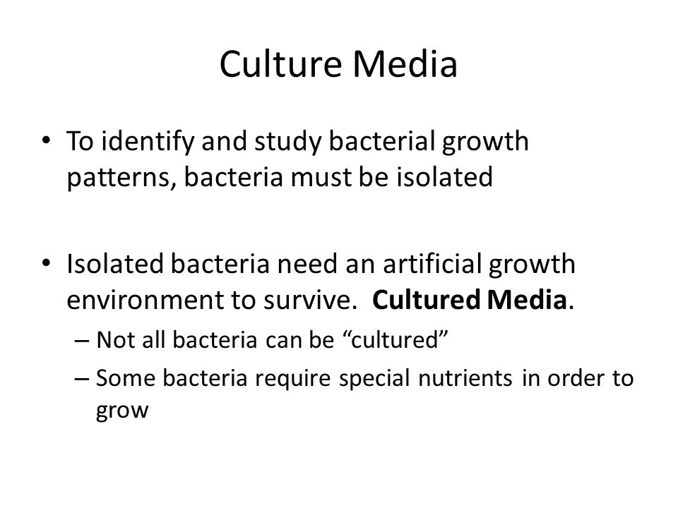 Culture Media To identify and study bacterial growth patterns, bacteria must be isolated.