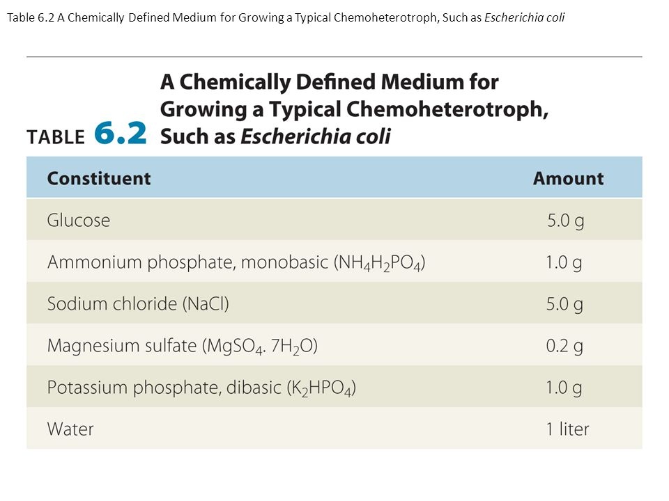 Table 6.2 A Chemically Defined Medium for Growing a Typical Chemoheterotroph, Such as Escherichia coli