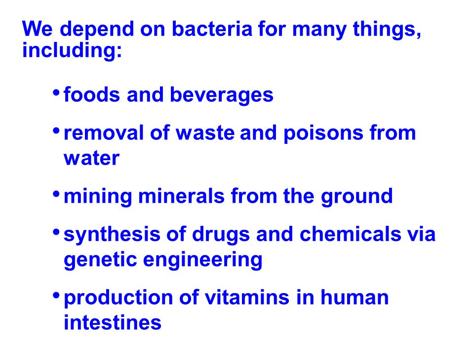 We depend on bacteria for many things, including:
