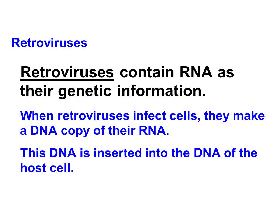 Retroviruses contain RNA as their genetic information.