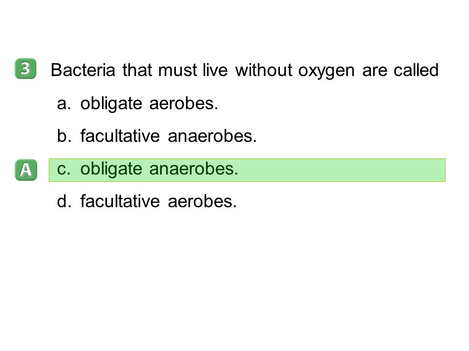 Bacteria that must live without oxygen are called obligate aerobes.