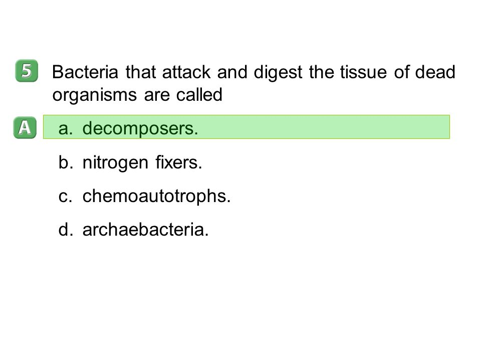 19–1 Bacteria that attack and digest the tissue of dead organisms are called. decomposers. nitrogen fixers.