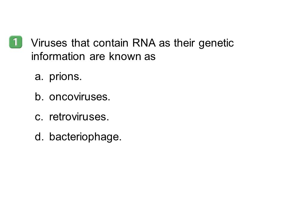 Viruses that contain RNA as their genetic information are known as