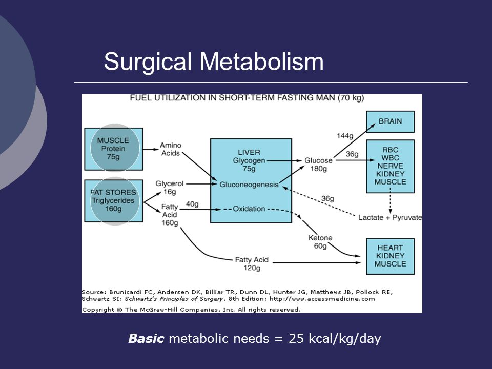 Basic metabolic needs = 25 kcal/kg/day