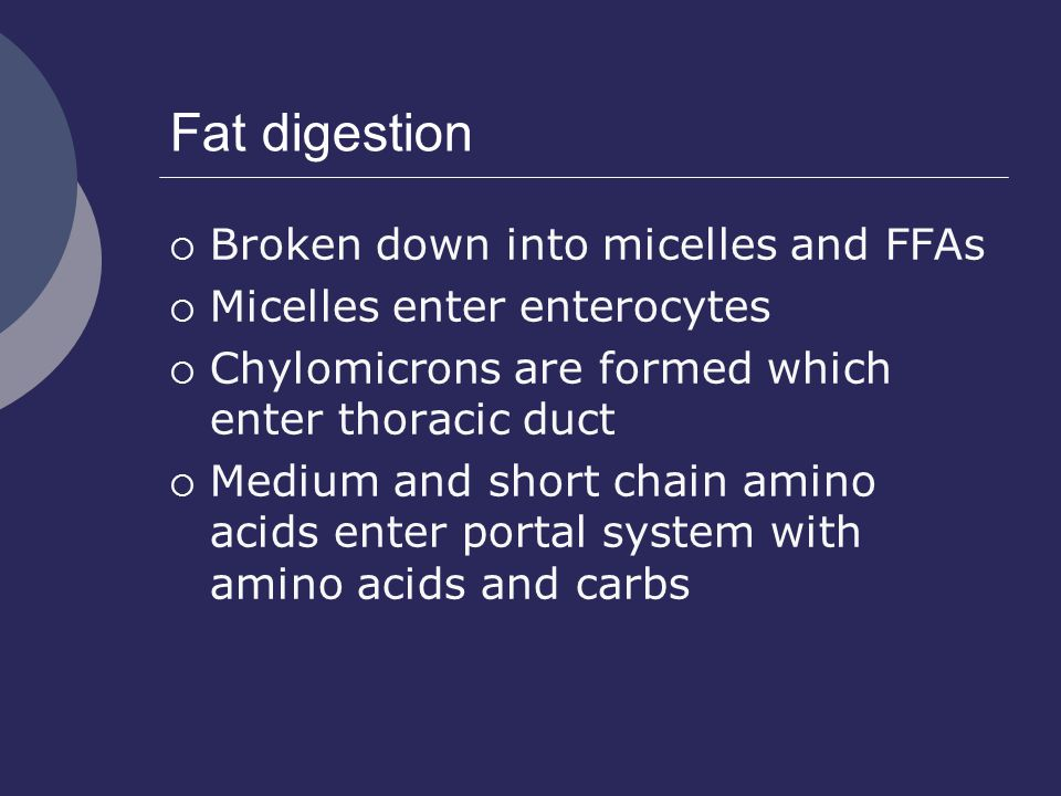 Fat digestion Broken down into micelles and FFAs