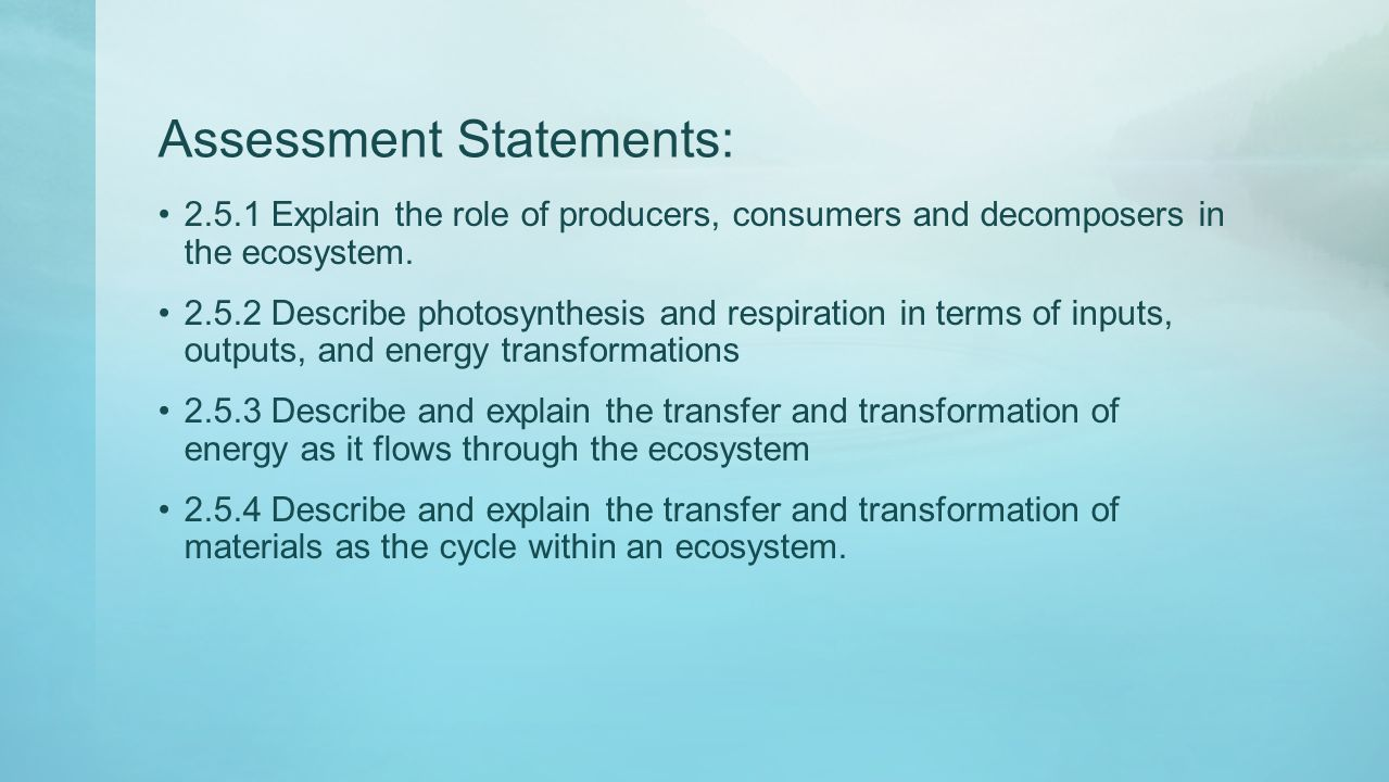 Assessment Statements: